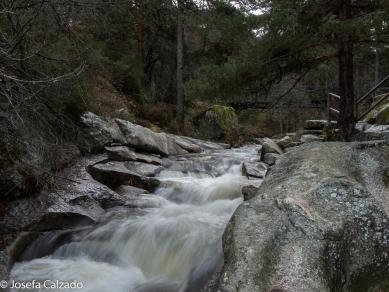 Detalle cauce del Rio Eresma