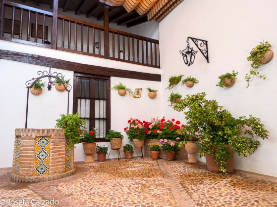 Patio interior con pozo original