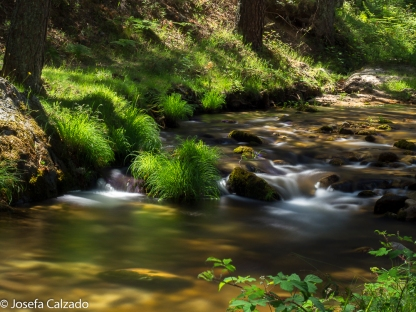 Detalle margen del río Eresma