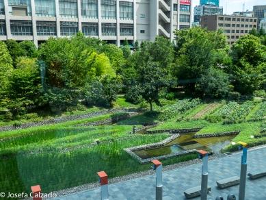 Jardines del Umeda Sky Building