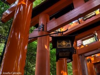 Detalle faroles Senbon Torii