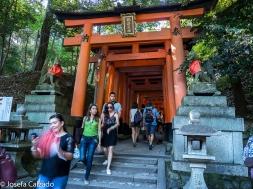 Entrada a las mil puertas torii o Senbon Torii