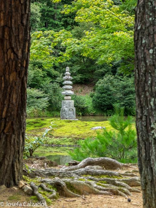 Fuente de piedra