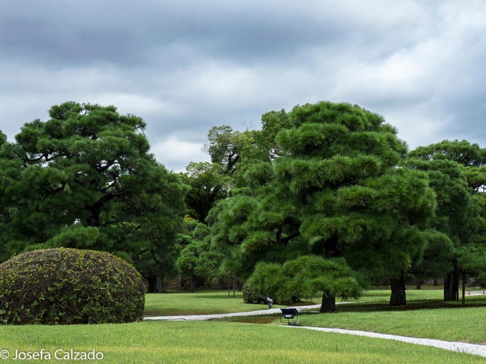Parte occidental del jardín Seiryu-en