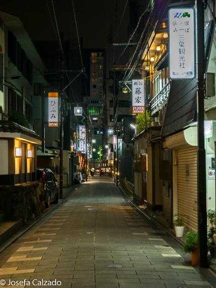 Calle lateral del barrio de Gion