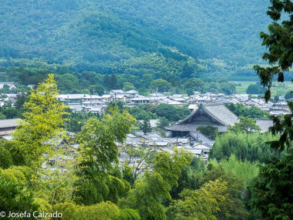 Vista de Arashiyama desde la cima del templo