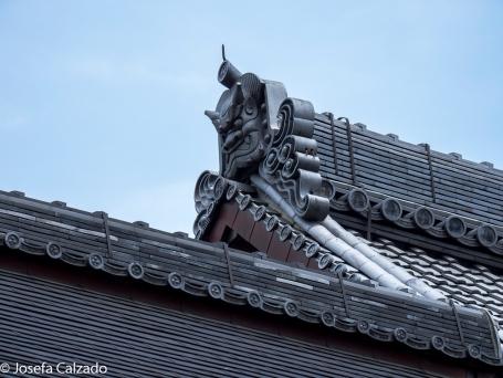 Detalle del tejado