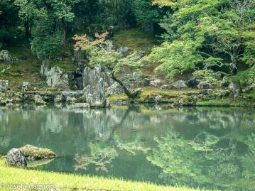 Reflejo de los árboles de arce en el estanque Sogenchi