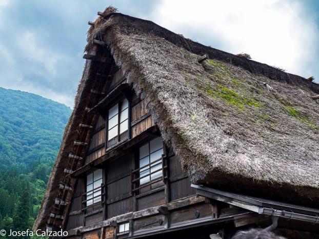 Detalle del tejado de paja