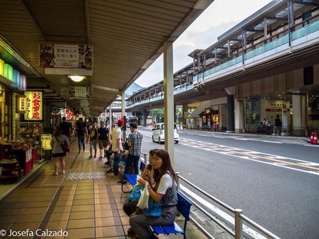 Detalle estación Hakone-Yumoto