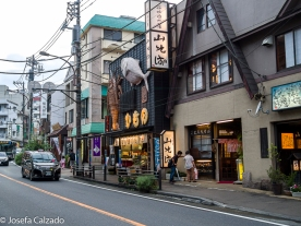 Calle principal de Hakone