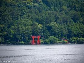 Torii Santuario de Hakone