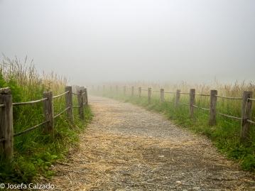 Camino hacia el mirador del Monte Fuji