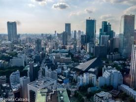 Vista de Tokio
