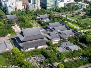Detalle Santuario y cementerio visto desde la Torre de Tokio