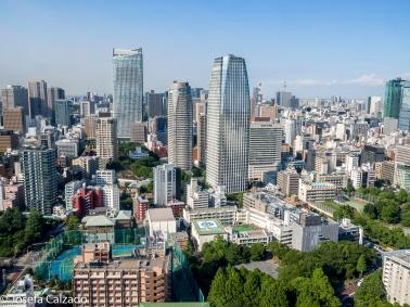 Vista desde el primer observatorio y al fondo el Tokyo Sky Tree