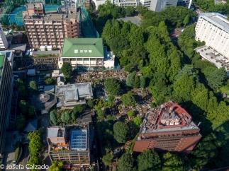 Detalle de cementerio en el mismo centro de Tokio