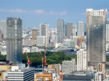 Vista desde el primer observatorio de la Torre de Tokio