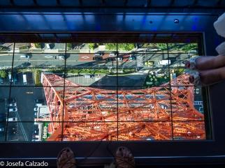 Suelo de cristal (Lookdown Window)