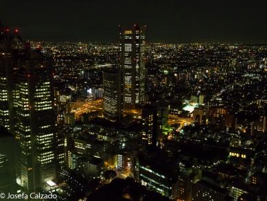 Vista nocturna de Tokio