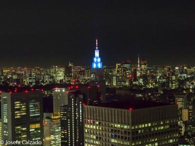 Vista desde la torre norte y detalle del NTT Docomo Yoyogi Building