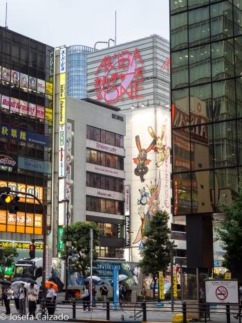 Detalle del Akiba zone