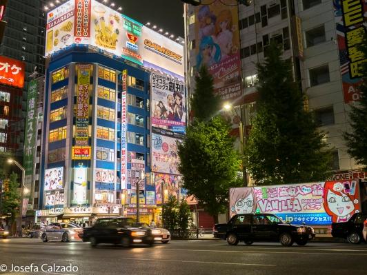 Zona típica de Akihabara de los Maid Cafe