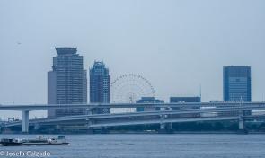 Bahía de Tokio, noria Ferris Wheel