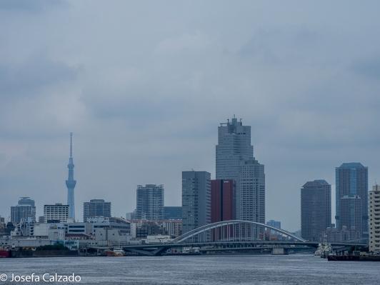 Bahía de Tokio al fondo Skytree