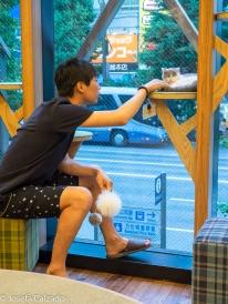 Neko Cafe MoCHA