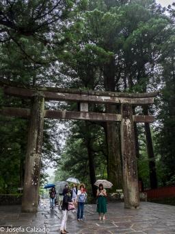 Torii de piedra que da acceso al Santuario de Tōshōgū