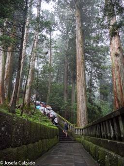 Ascenso al mausoleo de Tokugawa Ieyasu