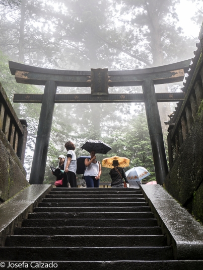 Torii al mausoleo de Tokugawa Ieyasu