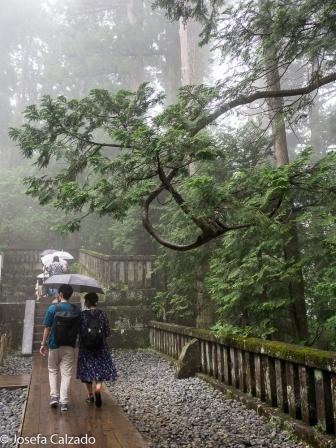 Admirando el mausoleo de Tokugawa Ieyasu