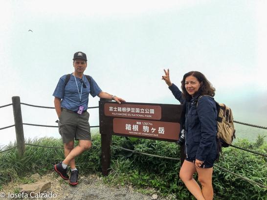 Mirador del Monte Fuji