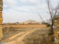 Campo de Consuegra con los molinos al fondo