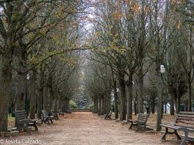 Paseo hacia el mirador de San Saturio