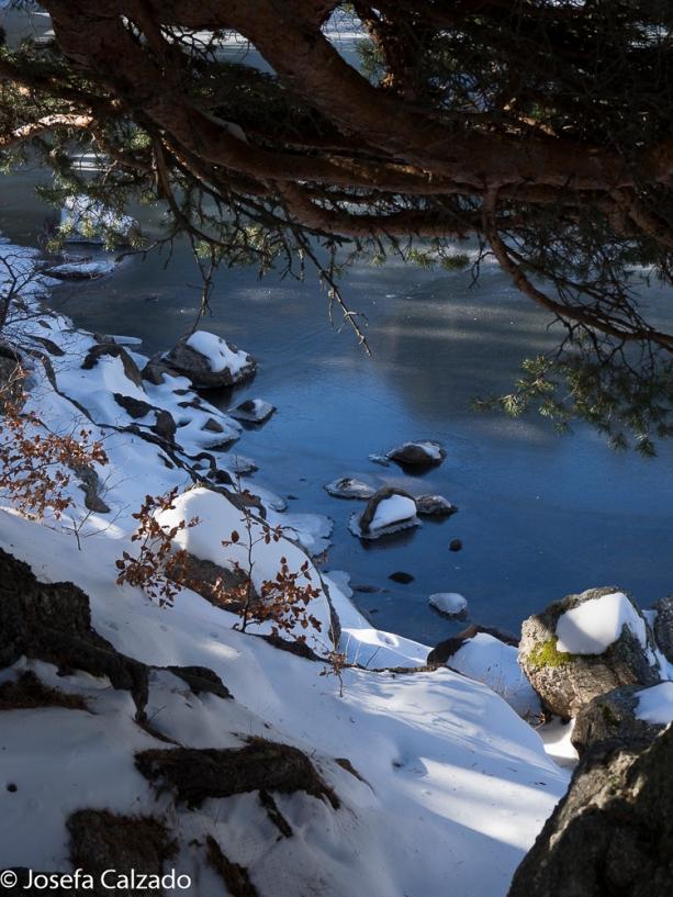 Detalle de la laguna helada