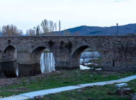 Detalle del puente romano