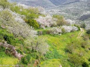 Panorámica del valle y sus terrazas