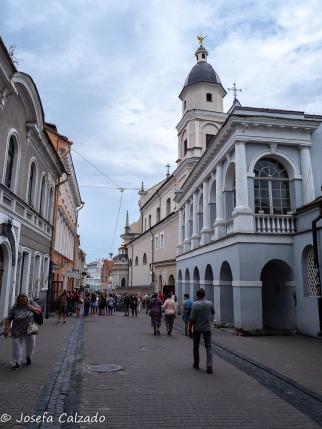 Calle Ausros Vartu