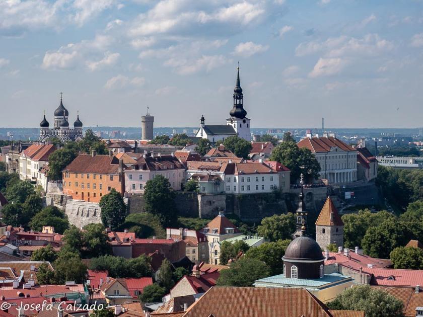 Tallin, vista de la ciudad alta