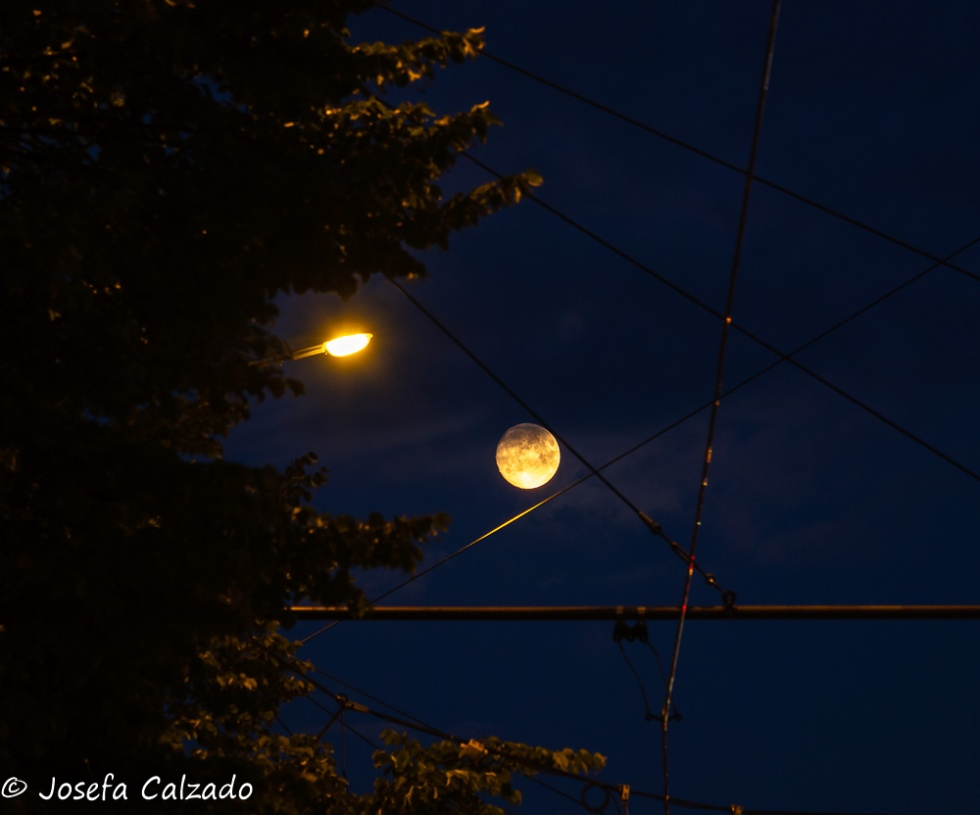 Luna llena de julio