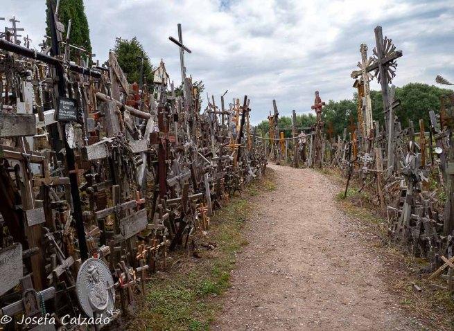 Camino entre cruces