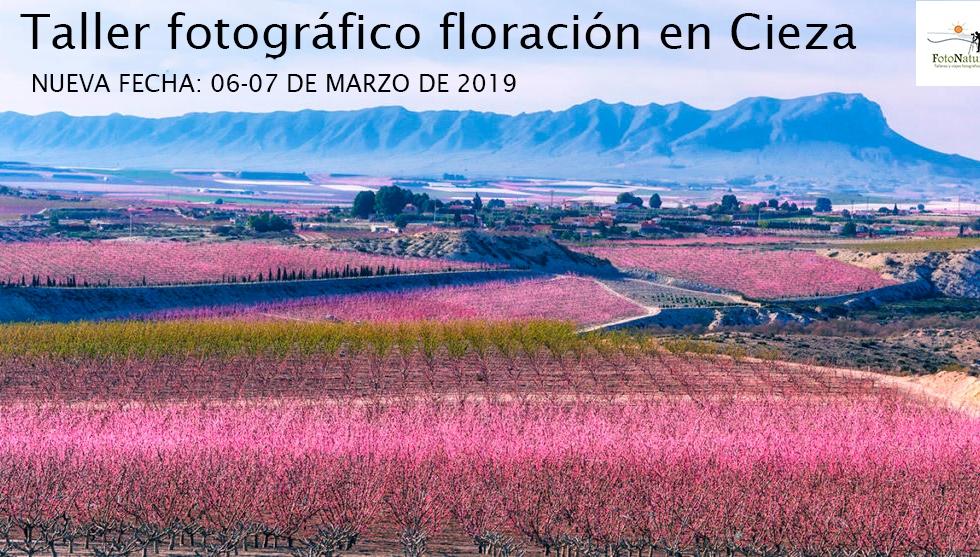 Taller fotográfico floración en Cieza