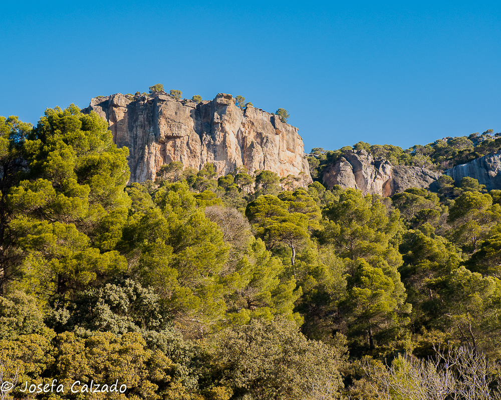 Sierra del Rodenal
