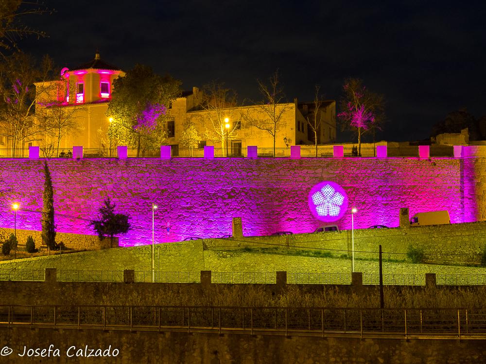 Balcón del Muro