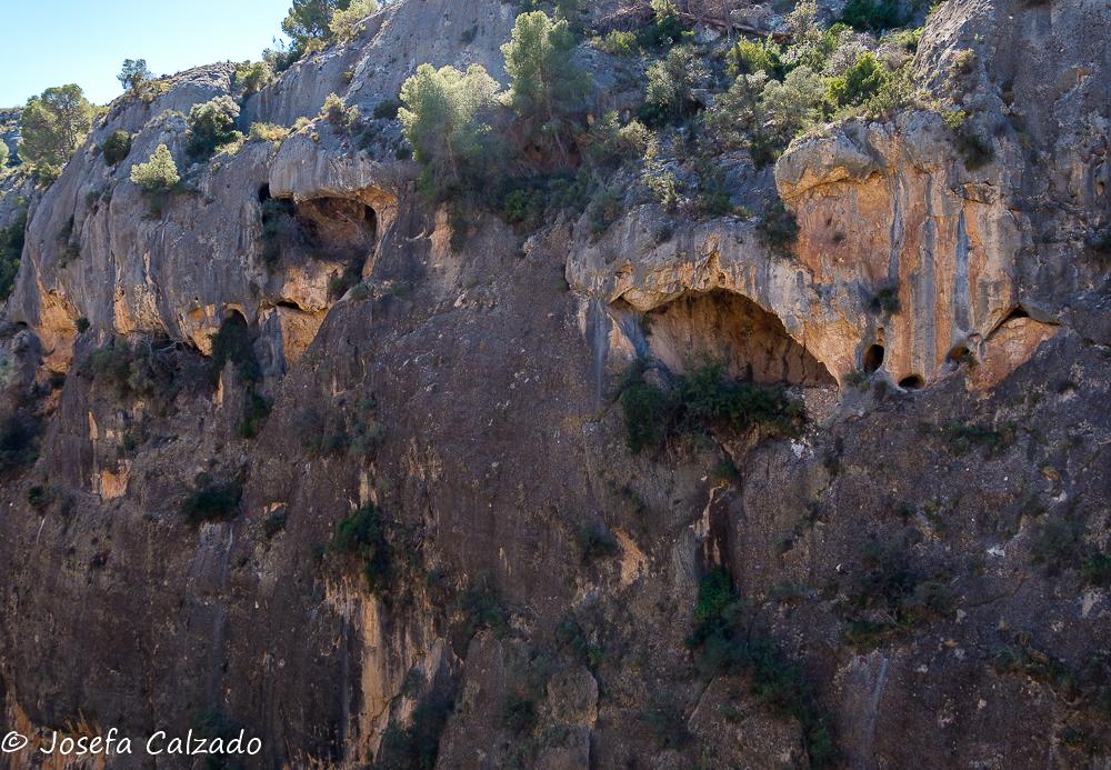 Cuevas en la ladera