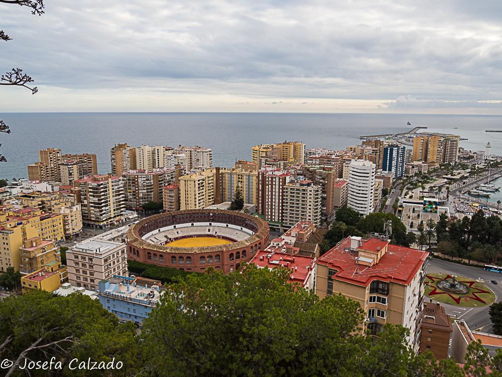 Vista aérea de la Plaza de Toros de la Malagueta
