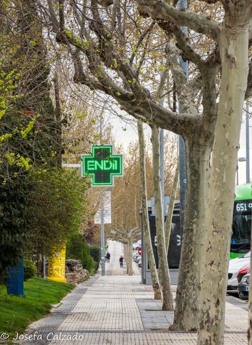 Detalle Avenida de España